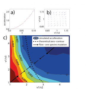 Relative acceleration in growth rates of a mutating species in rock-paper-scissors game